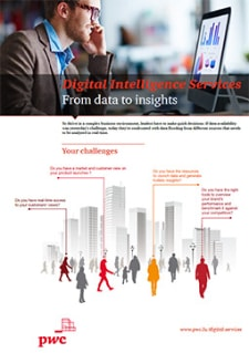 Digital Intelligence Services: From data to insights