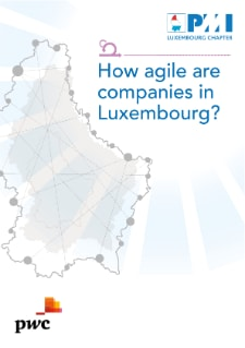 How agile are companies in Luxembourg?